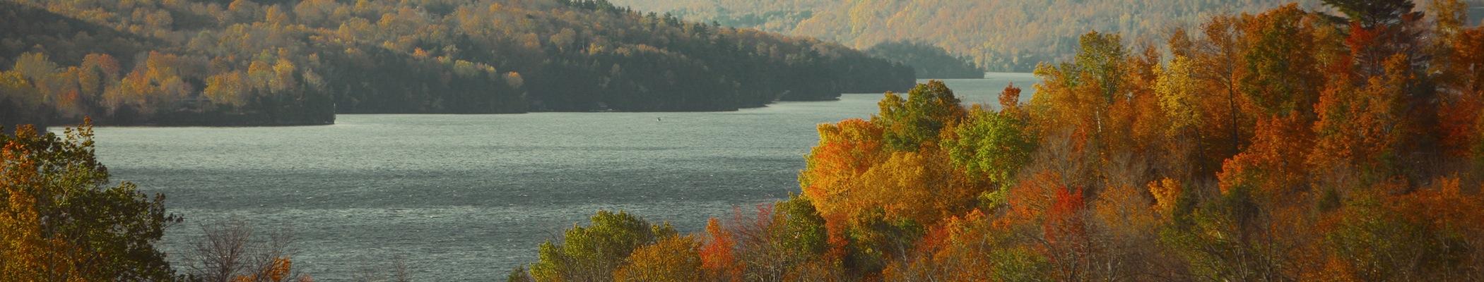 landscape-nature-forest-lake